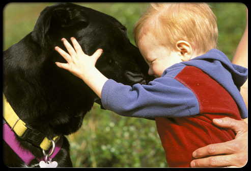 27 ways pets can improve your health s11 dog with baby 27 Ways Pets Can Improve Your Health