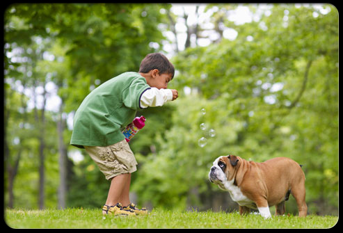 27 ways pets can improve your health s16 kid blowing bubbles at dog 27 Ways Pets Can Improve Your Health