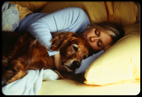27 ways pets can improve your health s22 sleeping with dog 27 Ways Pets Can Improve Your Health