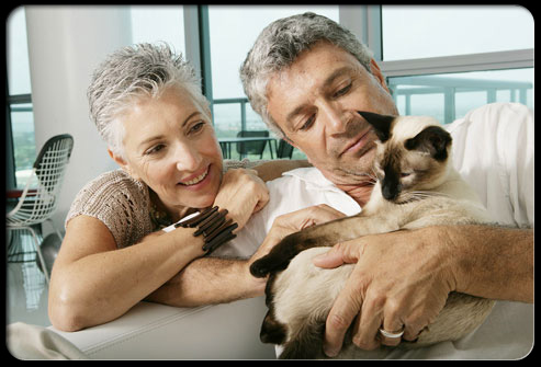 27 ways pets can improve your health s3 couple holding cat 27 Ways Pets Can Improve Your Health