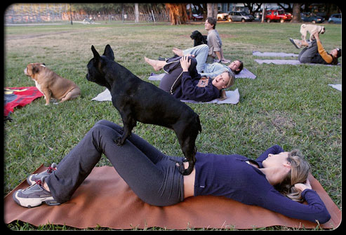 27 ways pets can improve your health s8 exercising with dogs 27 Ways Pets Can Improve Your Health