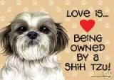 shih tzu love happy customers