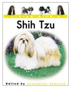 61f4359b80e903425aa471a9d2e31c07 Living with a Shih Tzu!!!:)