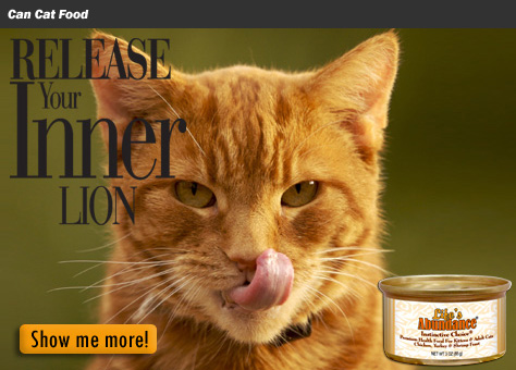 Can Cat Food